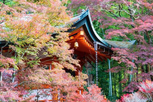 Templo de laranja no outono