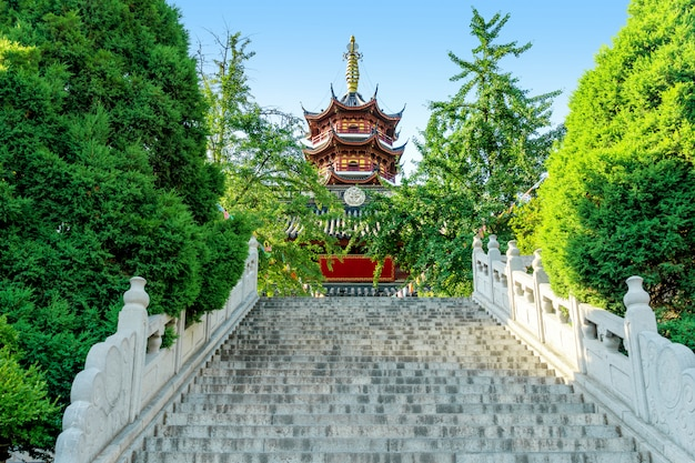 Templo e pagode