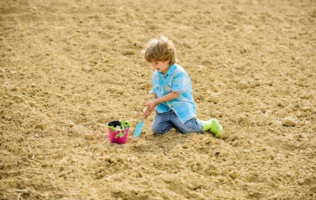 Tempo de diversão na fazenda. conceito de jardinagem. criança se divertindo com uma pá e planta na panela. plantio em campo. plantio de mudas. ajudante no jardim. rapaz senta-se no chão, plantando flores no campo.