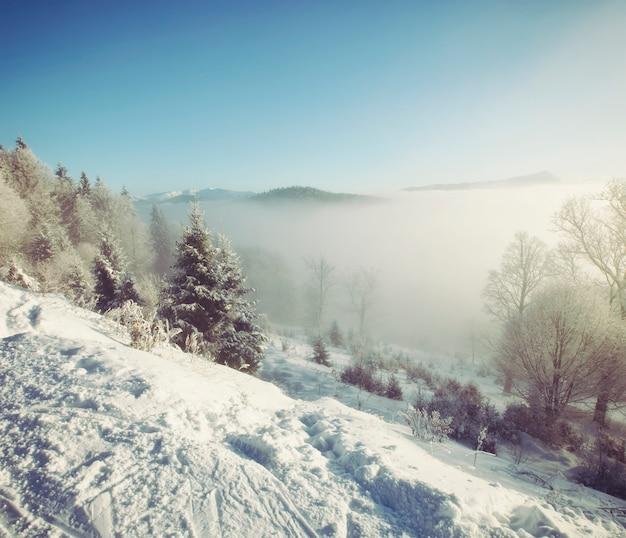 Tempo de nevoeiro nas montanhas de manhã