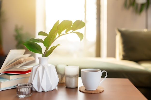Tempo de relaxamento no conforto do vaso interno verde do loft com zamioculcas