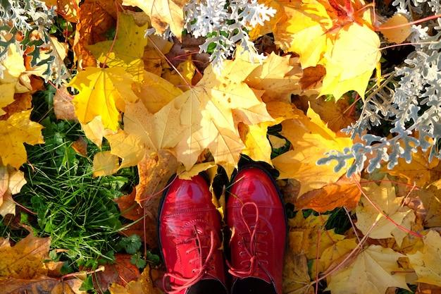 Tempo ensolarado de outubro.