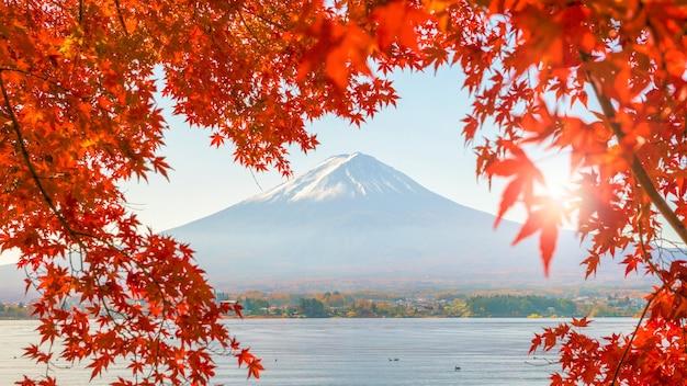 Temporada de outono colorida e montanha fuji com folhas vermelhas no lago kawaguchiko no japão