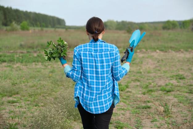 Temporada de primavera, mulher andando no jardim com arbustos de morango