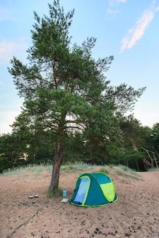 Tenda debaixo de uma árvore na praia de areia