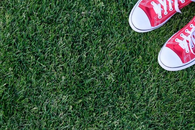 Tênis vermelho em um gramado, vista de cima