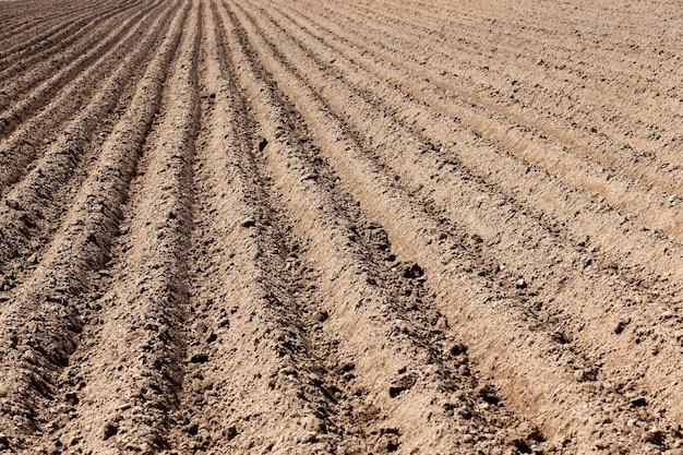 Terra arada, sulcos - campo agrícola que foi arado para o plantio de batata, primavera, sulcos