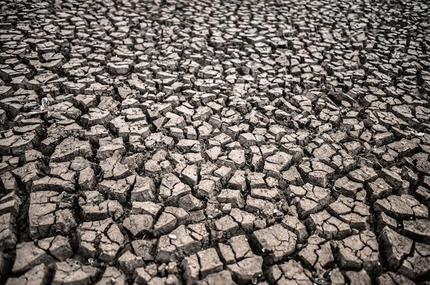 Terra árida com solo seco e rachado, aquecimento global