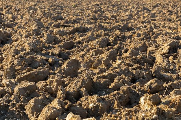 Terra em um campo para cultivos agrícolas