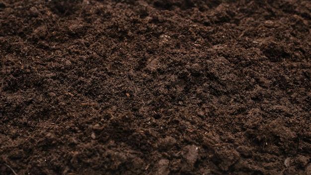 Terra preta para o fundo da planta. vista do topo.