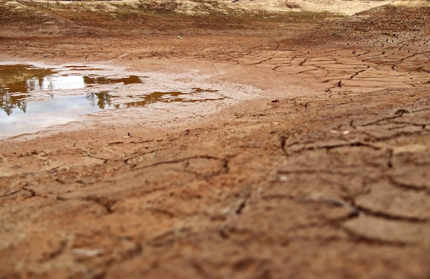 Terra rachada no fundo de um lago seco