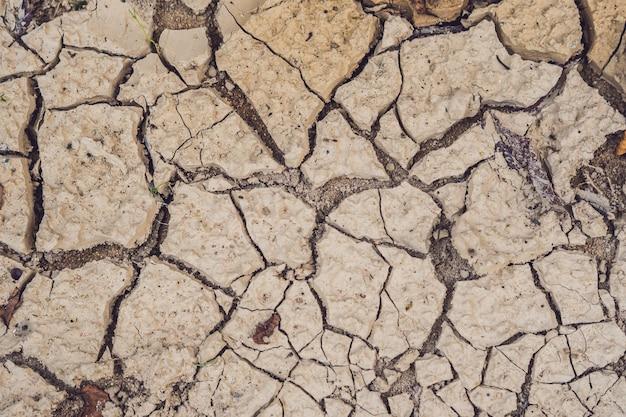 Terra seca e rachada. o deserto.