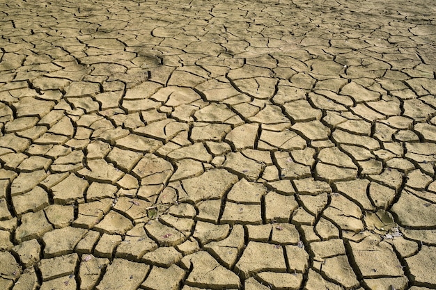Terra seca rachada com textura de rachaduras