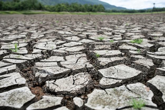 Terra seca rachada sem água. abstrato