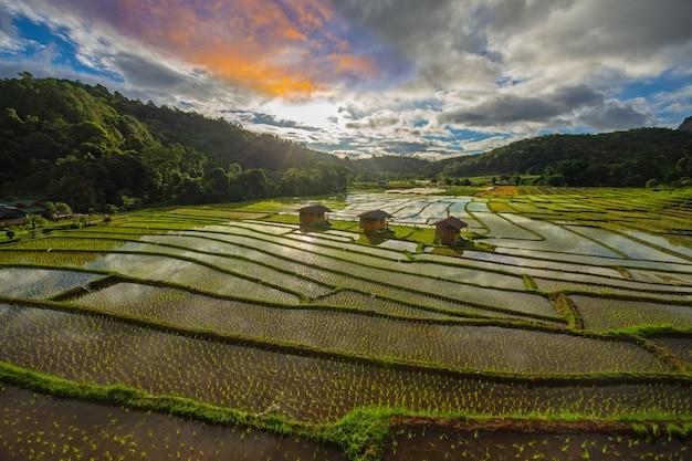 Terraço do arroz da estada da casa de mae klang luang no norte de tailândia no chiangmai tailândia do tempo do dia. campos de arroz chom thong district.