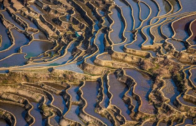 Terraços de arroz no condado de yuanyang. província de yunnan. china.