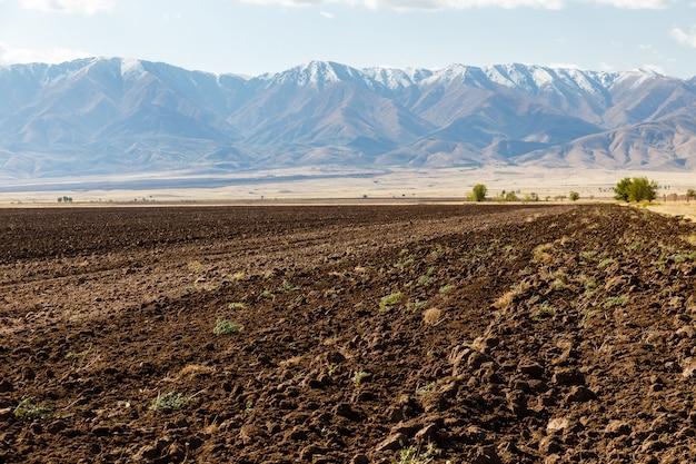 Terras agrícolas, campo arado contra o pano de fundo das montanhas nevadas, cazaquistão