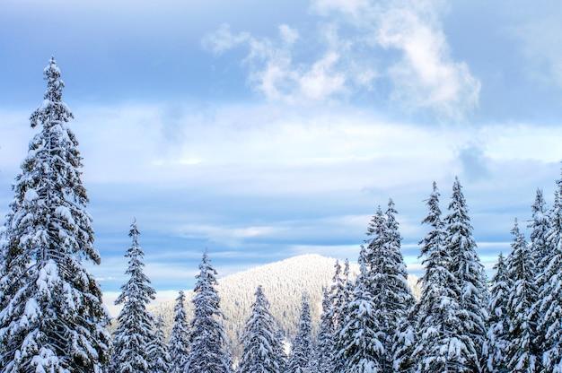Terras altas no inverno estão envoltas em neve.