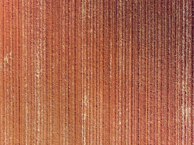 Terreno arado, preparado para o plantio.