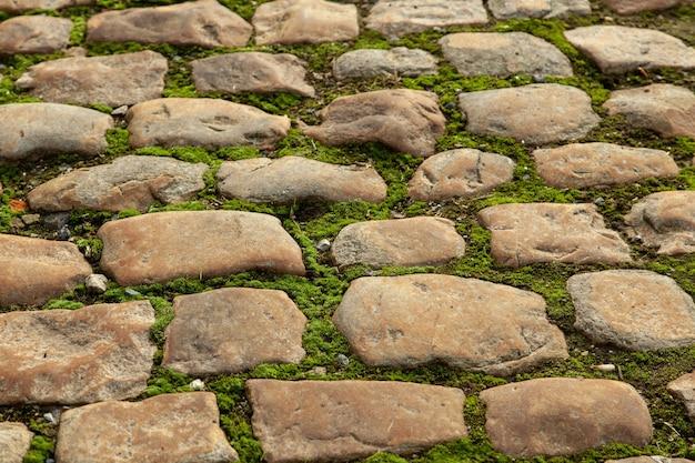 Terreno coberto de musgo no meio de um caminho de paralelepípedos