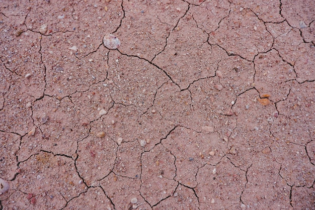 Terreno seco por fundo de seca.