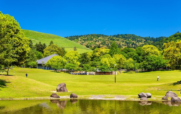 Terrenos do parque nara na região de kansai no japão