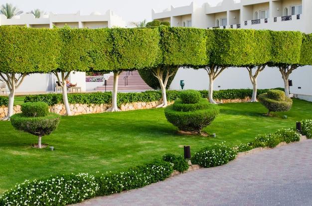 Território de parque bem-preparado de hotel de cinco estrelas. verão em sharm el sheikh.