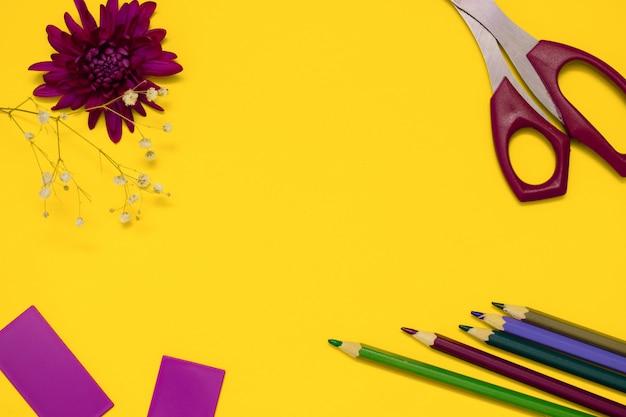 Tesoura, lápis coloridos e flor de crisântemo