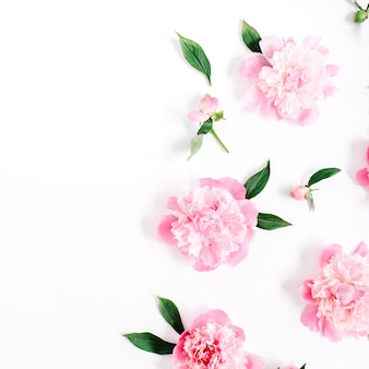 Teste padrão de flor de flores de peônia rosa, galhos, folhas e pétalas em fundo branco. camada plana, vista superior
