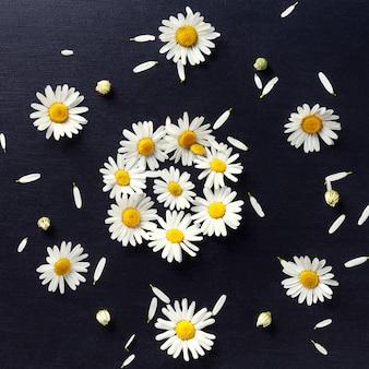 Teste padrão floral embutido de margaridas em um close-up preto. vista superior de flores