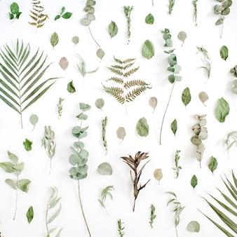 Teste padrão floral feito de eucalipto, folha de palmeira, folhas verdes, galhos em branco