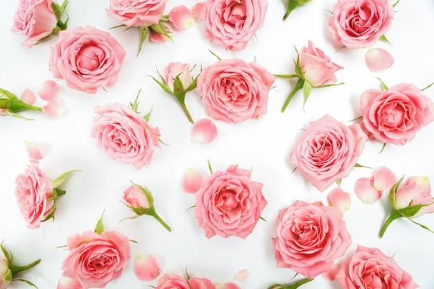 Teste padrão floral feito de rosas rosa isoladas