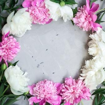 Teste padrão floral, moldura feita de belas peônias rosa e brancas em fundo cinza.