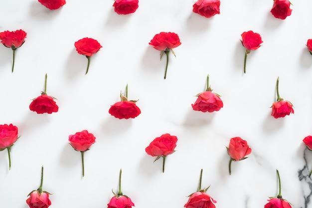 Teste padrão floral sem costura feita de flores rosas vermelhas