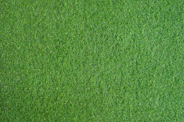 Texto de grama verde artificial e plano de fundo