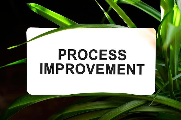 Texto de melhoria de processo em branco cercado por folhas verdes