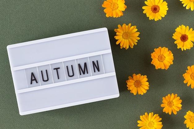 Texto de outono na caixa de luz e flores de calêndula laranja sobre fundo verde. vista superior flat lay minimal style. conceito bem-vindo queda. cartão de felicitações