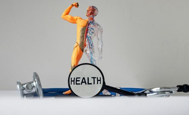 Texto de saúde na foto com modelo de corpo humano saudável