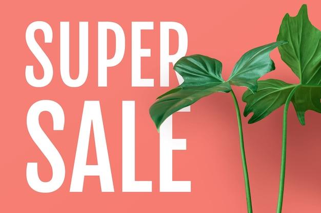 Texto de super venda com folhas tropicais em fundo de cor pastel. para design de anúncios de promoção