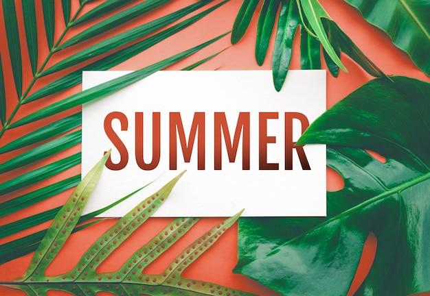 Texto de verão com folhas tropicais em fundo de cor pastel. para design de anúncios de promoção