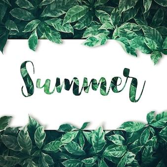 Texto de verão com projeto de fundo de folhas verdes com papel branco. lay plana. vista superior da folha. conceitos da natureza