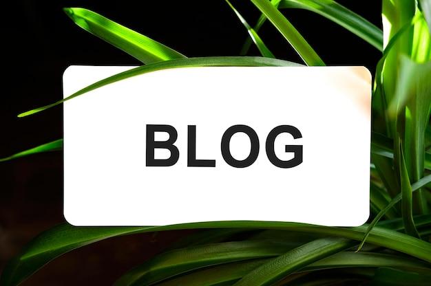 Texto do blog em branco cercado por folhas verdes