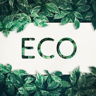 Texto eco com fundo de folha verde.