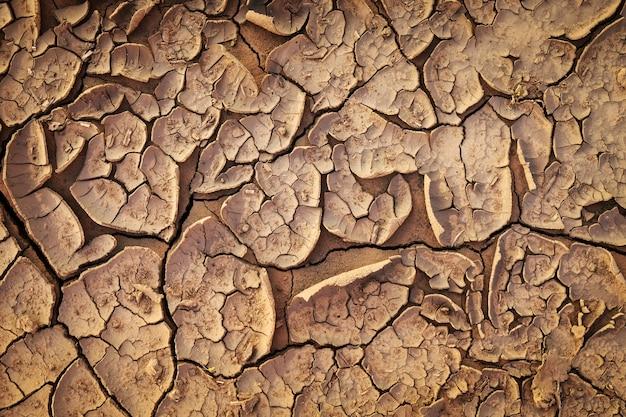 Textura à terra secada do solo rachado da terra.