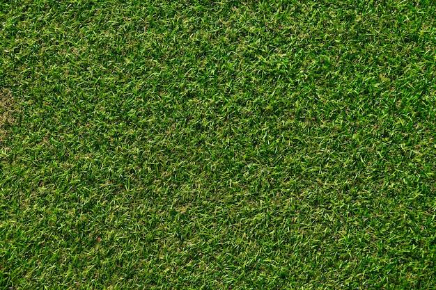 Textura artificial do relvado da grama. fundo de superfície verde.
