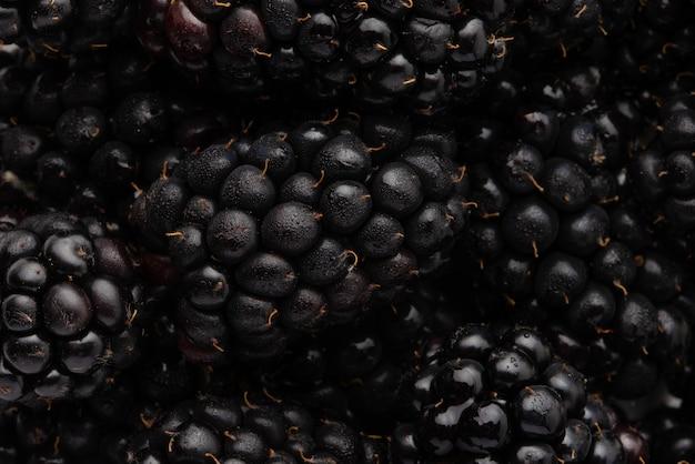 Textura com close up de blackberry, fundo de frutas, quadro horizontal