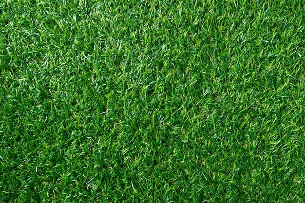 Textura da grama verde para o fundo. teste padrão e textura verdes do gramado. vista do topo.