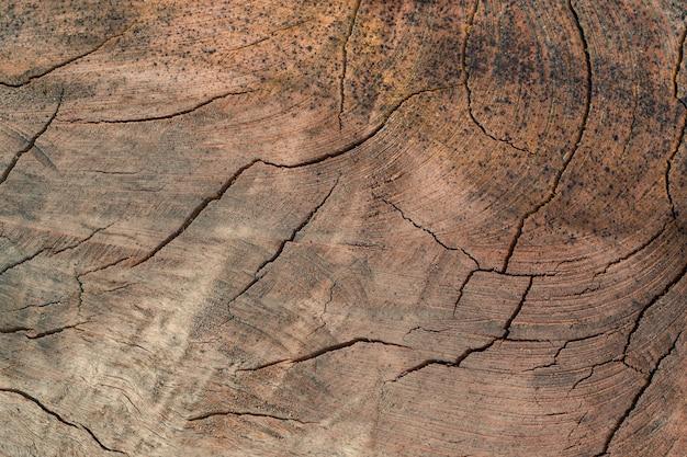 Textura da madeira empilhada