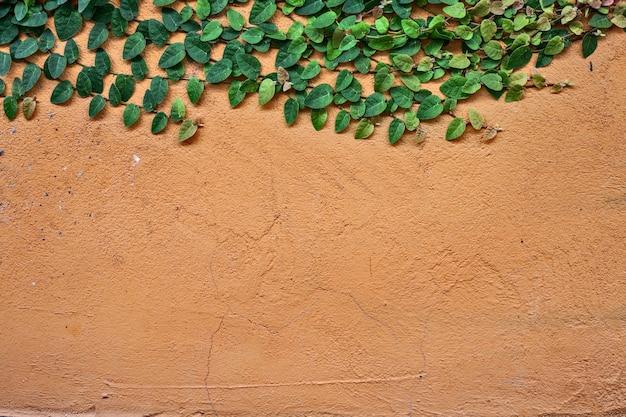 Textura da parede de tijolos