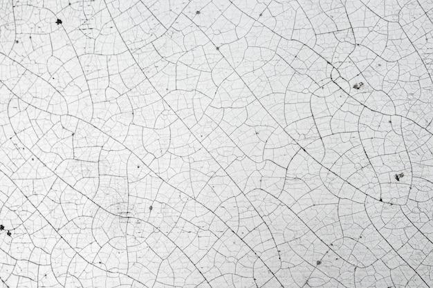 Textura da rachadura do couro branco, abstrata.